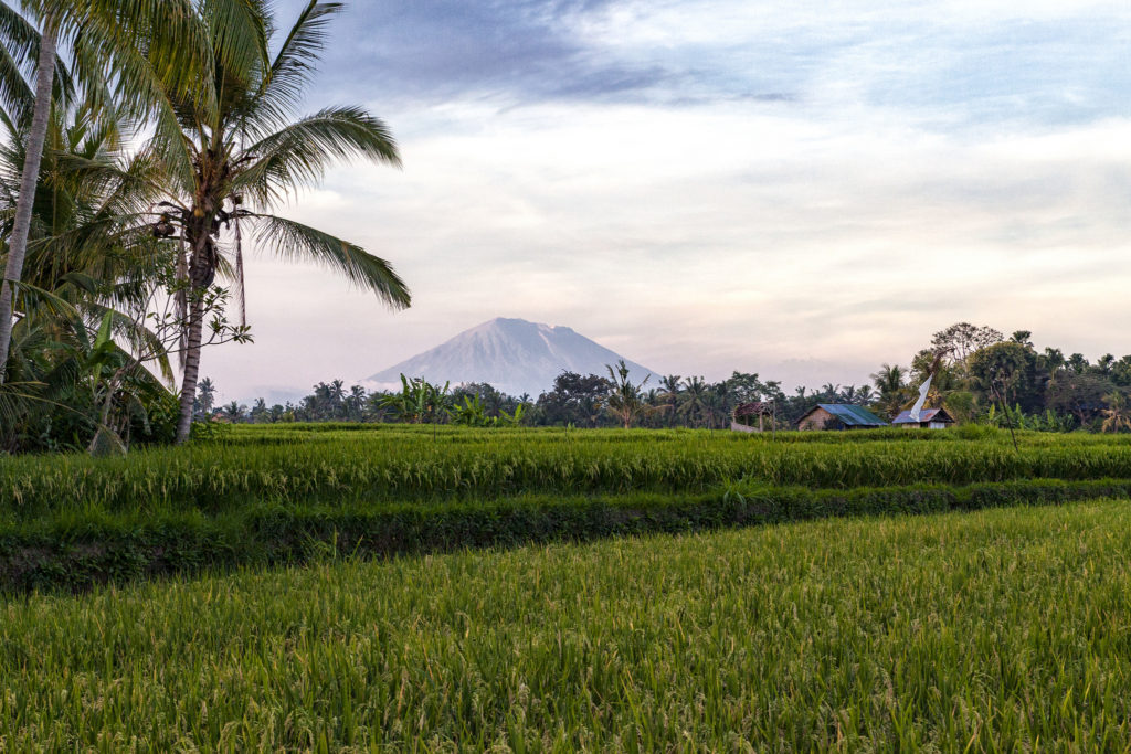 Mount Agung from Ubud